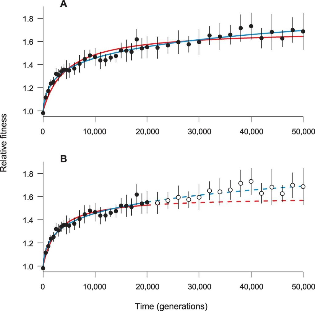 Figure 2 from Wiser et al. 2013. (A) Hyperbolic (red) and power-law (blue) models fit to the set of mean fitness values (black symbols) from all 12 populations. (B) Fit of hyperbolic (solid red) and power-law (solid blue) models to data from first 20,000 generations only (filled symbols), with model predictions (dashed lines) and later data (open symbols). Error bars are 95% confidence limits based on the replicate populations.