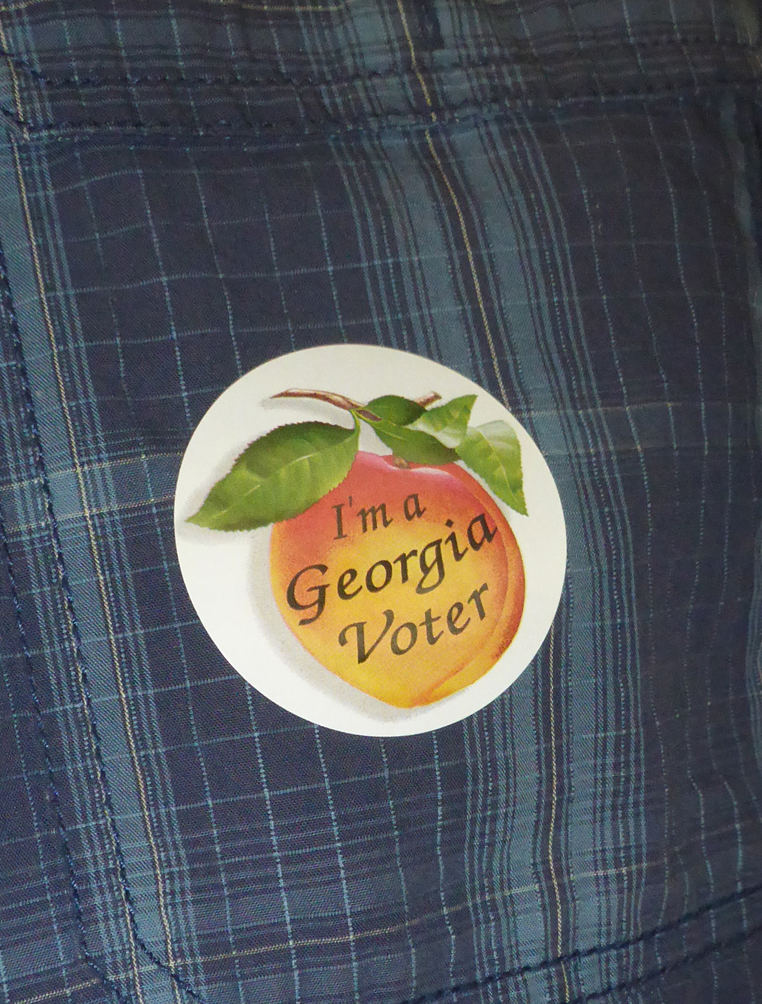 Georgia voter sticker