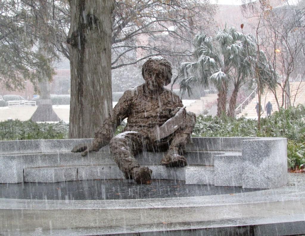 Einstein in Snow