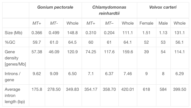 Hamaji et al. 2016 Table 1