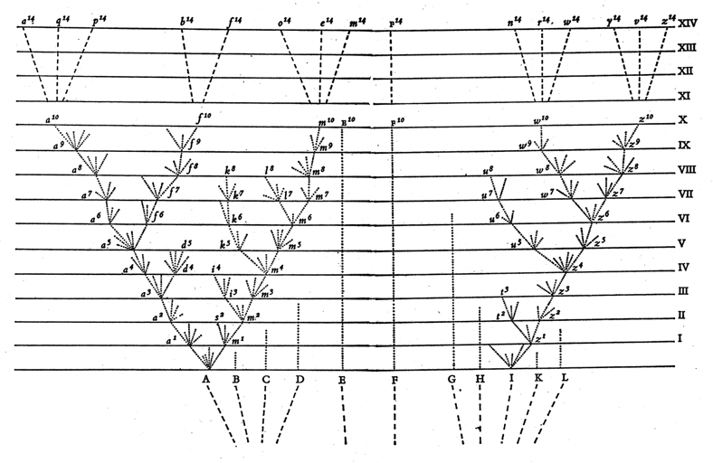 Phylogenetic tree from The Origin of Species