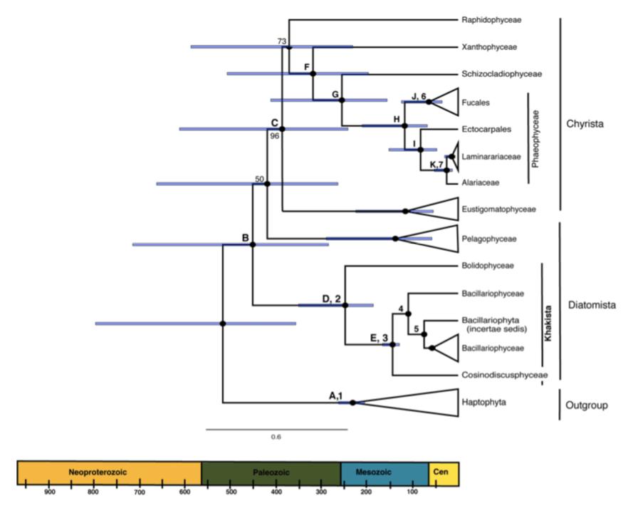 Figure 4 from Phillips et al. 2020