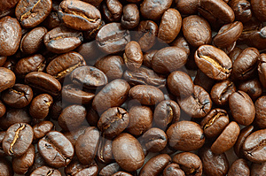 Free Stock Photography - Coffee beans texture