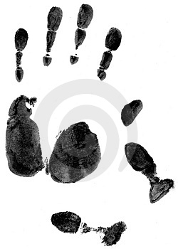 Free Stock Photo - Hand Prints