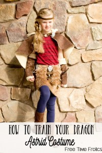 Astrid Costume, How to train a Dragon