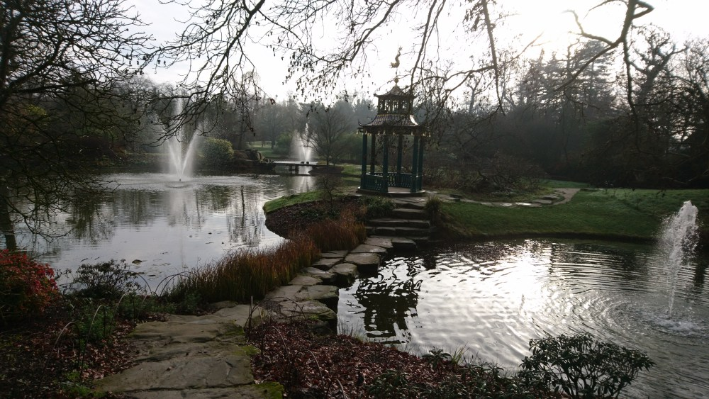 The water garden at Cliveden