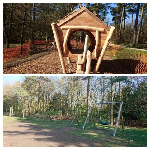 Wendover Woods Review | Wendover | Aylesbury | Buckinghamshire | Free Time with the Kids