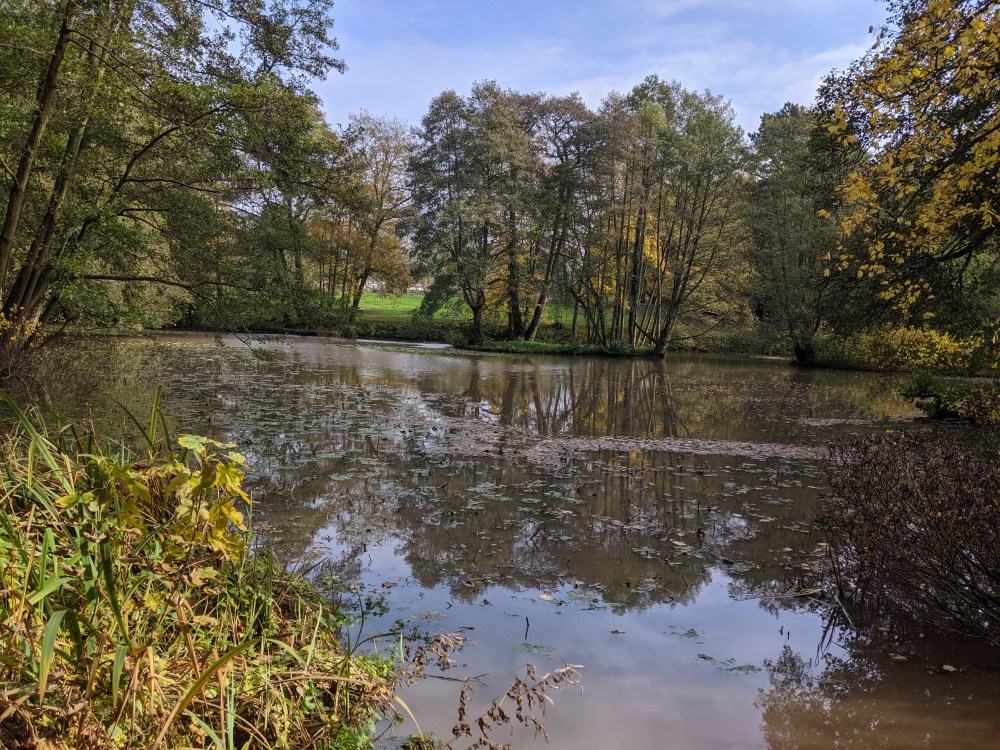 The Lake | Baddesley Clinton Review | Free Time with the Kids