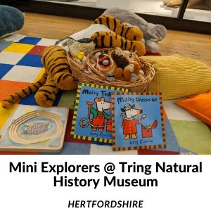 Toddler activities Hertfordshire
