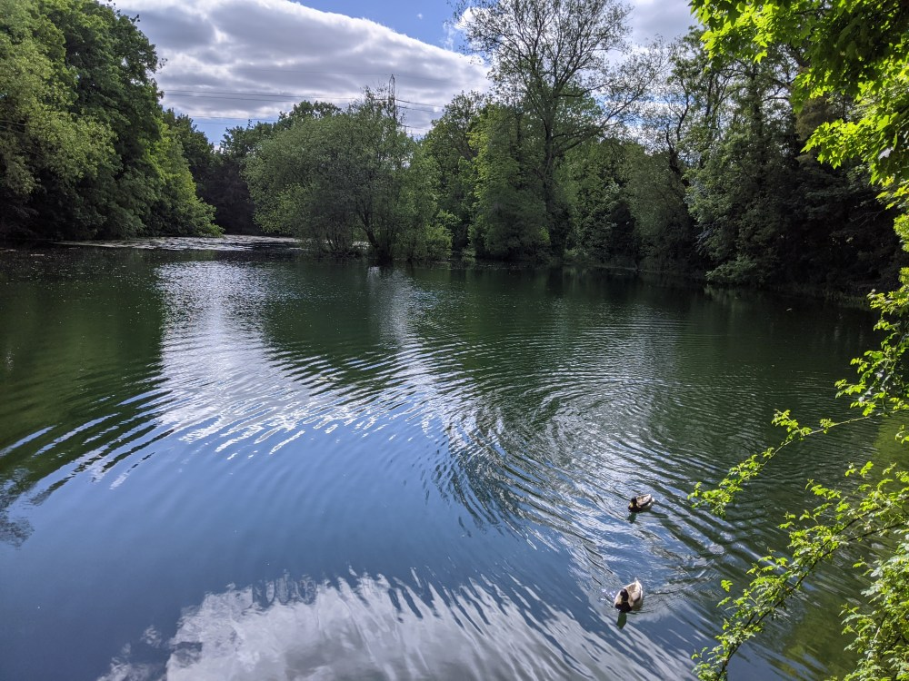 Hampden Pond, Wendover Review | Free Time with the Kids | Buckinghamshire