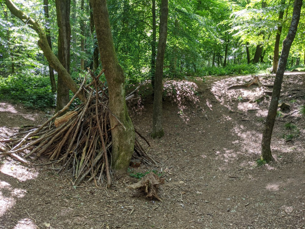 Cowleaze Wood Review | Stokenchurch, Buckinghamshire, Oxfordshire | Review by Free Time with the Kids