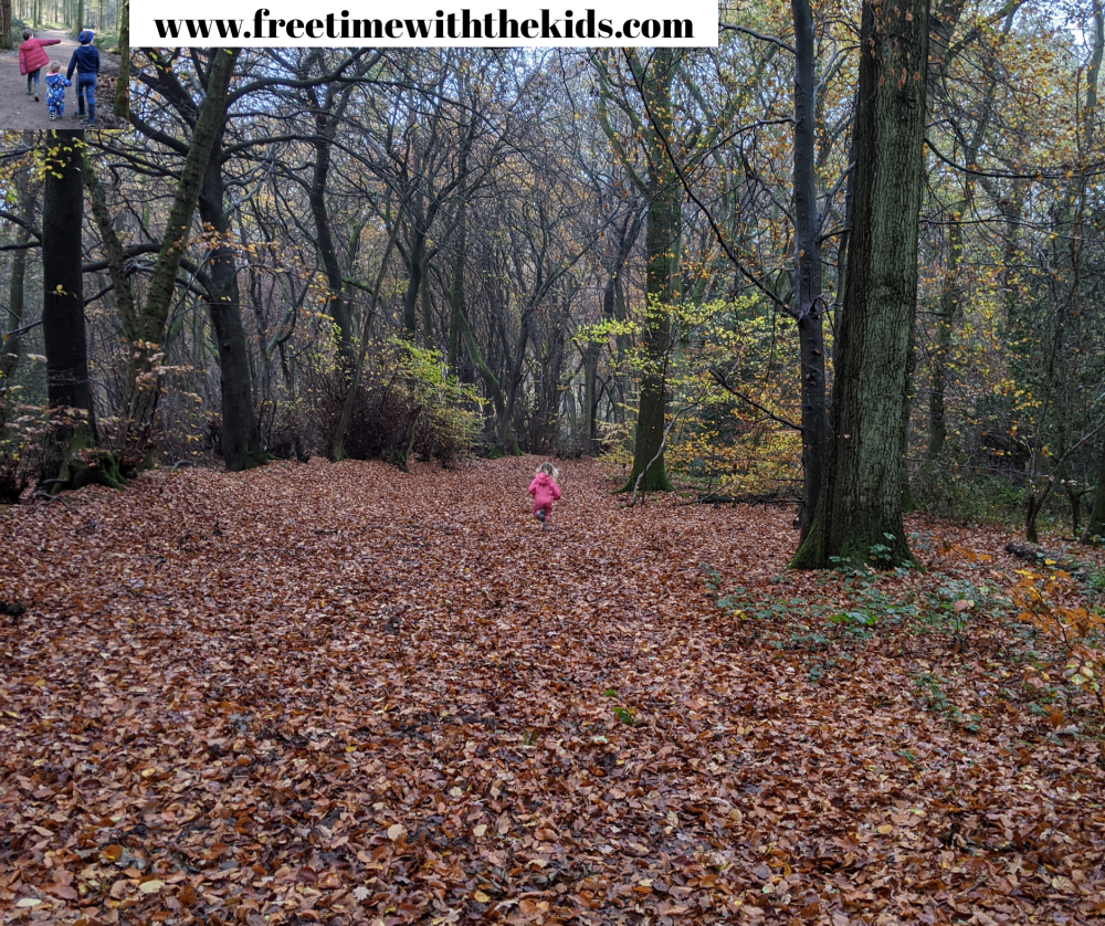 Coombe Hill Walks | Family friendly walks | Free Time with the Kids