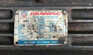 Hanning Induction Motor