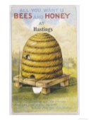 A whimsical vintage bees and honey print illustration.
