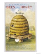 bees and honey 14