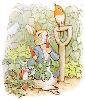 Public domain children's book illustration of Peter Rabbit