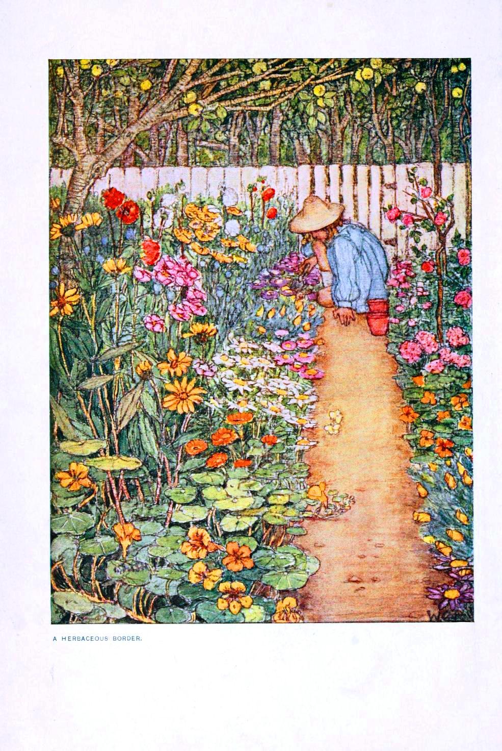 Public domain illustration for kids.  Flowers in the garden