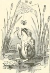 Vintage black and white illustration of a frog in a pond.  Public domain image