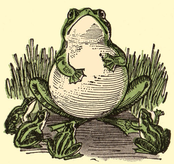 A vintage round frog in a pound