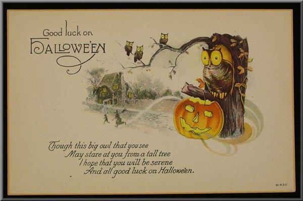 public domain vintage halloween owl