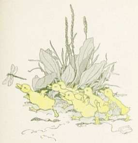 free public domain illustration of ducklings from vintage childrens book 2