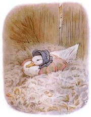 Public Domain vintage children's book illustration of a mother duck from Beatrix Potter