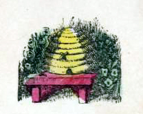 public domain bee hive illustrations vintage childrens books