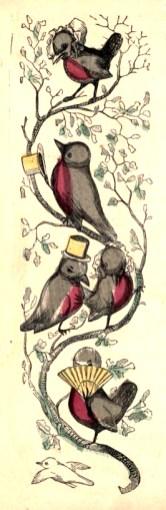 public domain robin illustrations vintage childrens books
