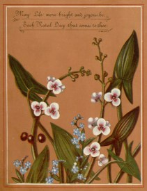 Public domain antique vintage floral birthday card