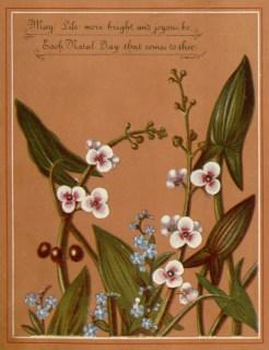 Public domain antique vintage floral birthday card