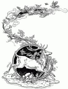 public domain vintage childrens book illustration the first price of wales deer nature brundage frances