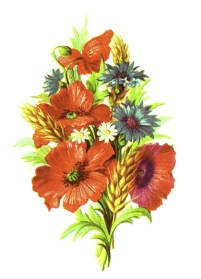 public domain vintage clipart floral bouquet with wheat wildflowers