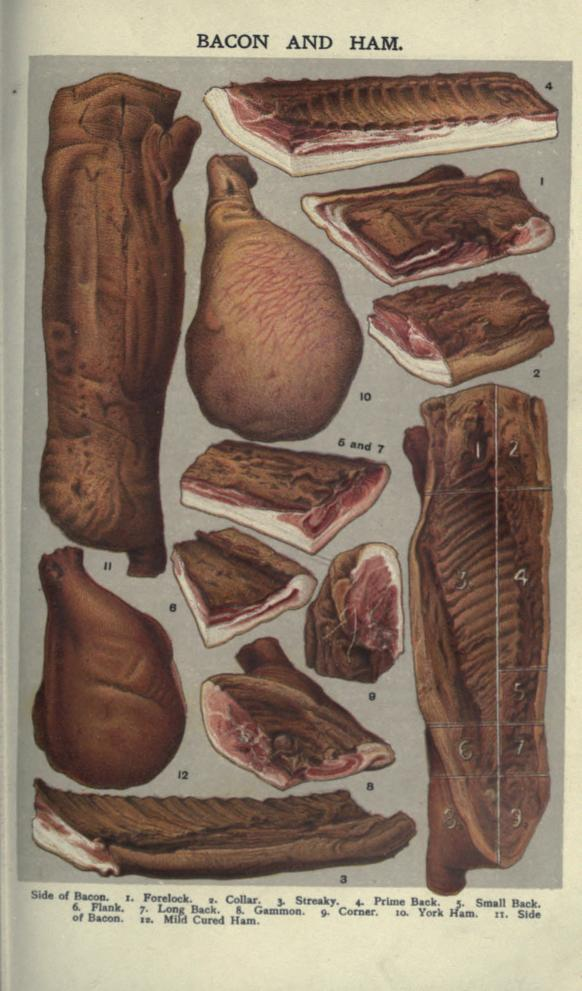 A free public domain vintage illustration of sliced butcher meat