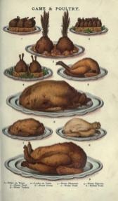 public domain vintage color illustrations of food meat turkey and poultry