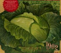 This is a free vintage color illustration of a head of cabbage from an antique seed catalog