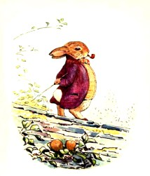 free vintage illustration of beatrix potter benjamin bunny 12