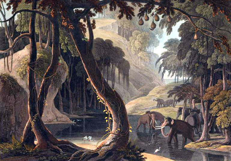 19th century color illustration of African scenery with elephants - public domain