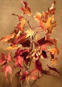 fall leaves 19th century autumn illustration public domain