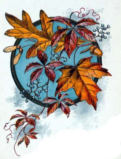 Fall illustration of Autumn Leaves from Menu