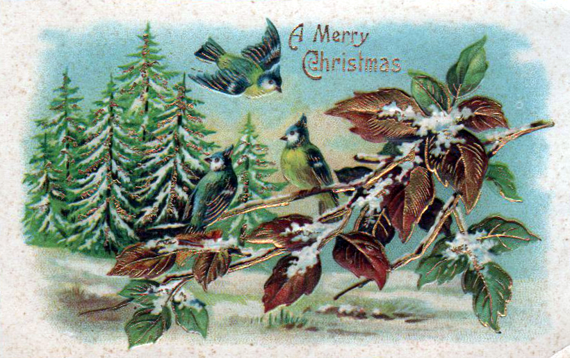 Winter Illustrations From The 19th 20th Century Free