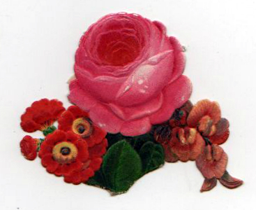 Free Valentine's Day pictures - 19th century rose die cut illustration