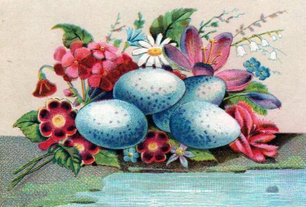 Copyright-free illustrations of blue eggs