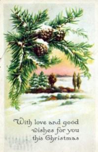 christmas illustration pine cone snow