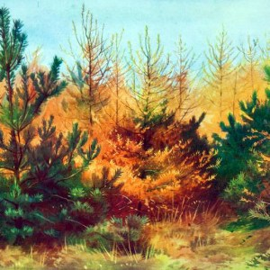 Free vintage landscape of Autumn trees, public domain.