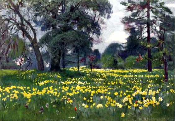 Free vintage landscape of yellow daffodils in the garden, public domain.