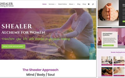 From Wix to WordPress: Shealer Makes a Move