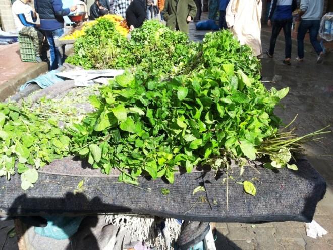 Kräuter Essaouira