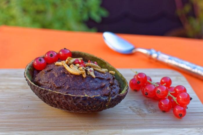 Avocado Kakao Creme Insekten3_DxO