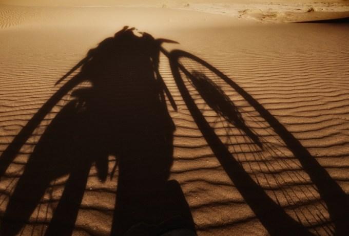 Schatten vom Motorrad