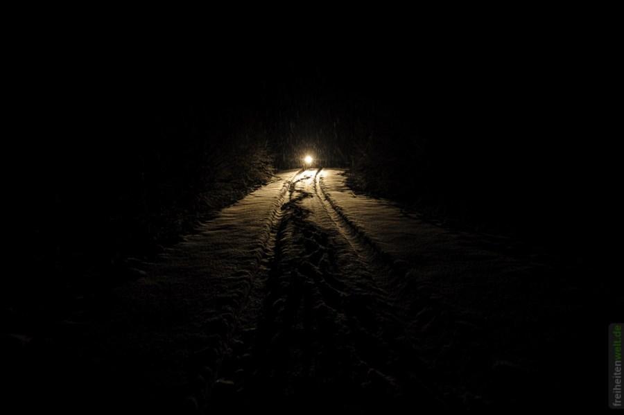 Fahrt duch die Wälder Norwegens bei Nacht
